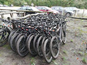 Standaard Mountainbike